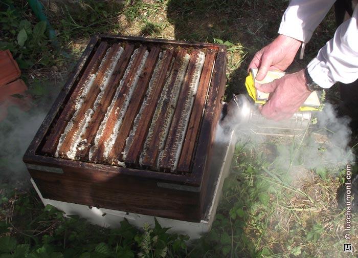 Je commets l'erreur d'utiliser trop de fumée pour enlever les abeilles.