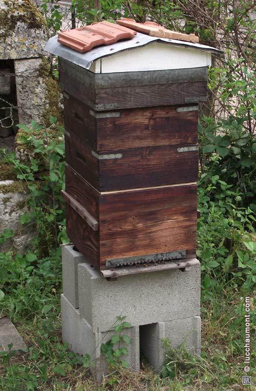 La ruche avec deux rehausses